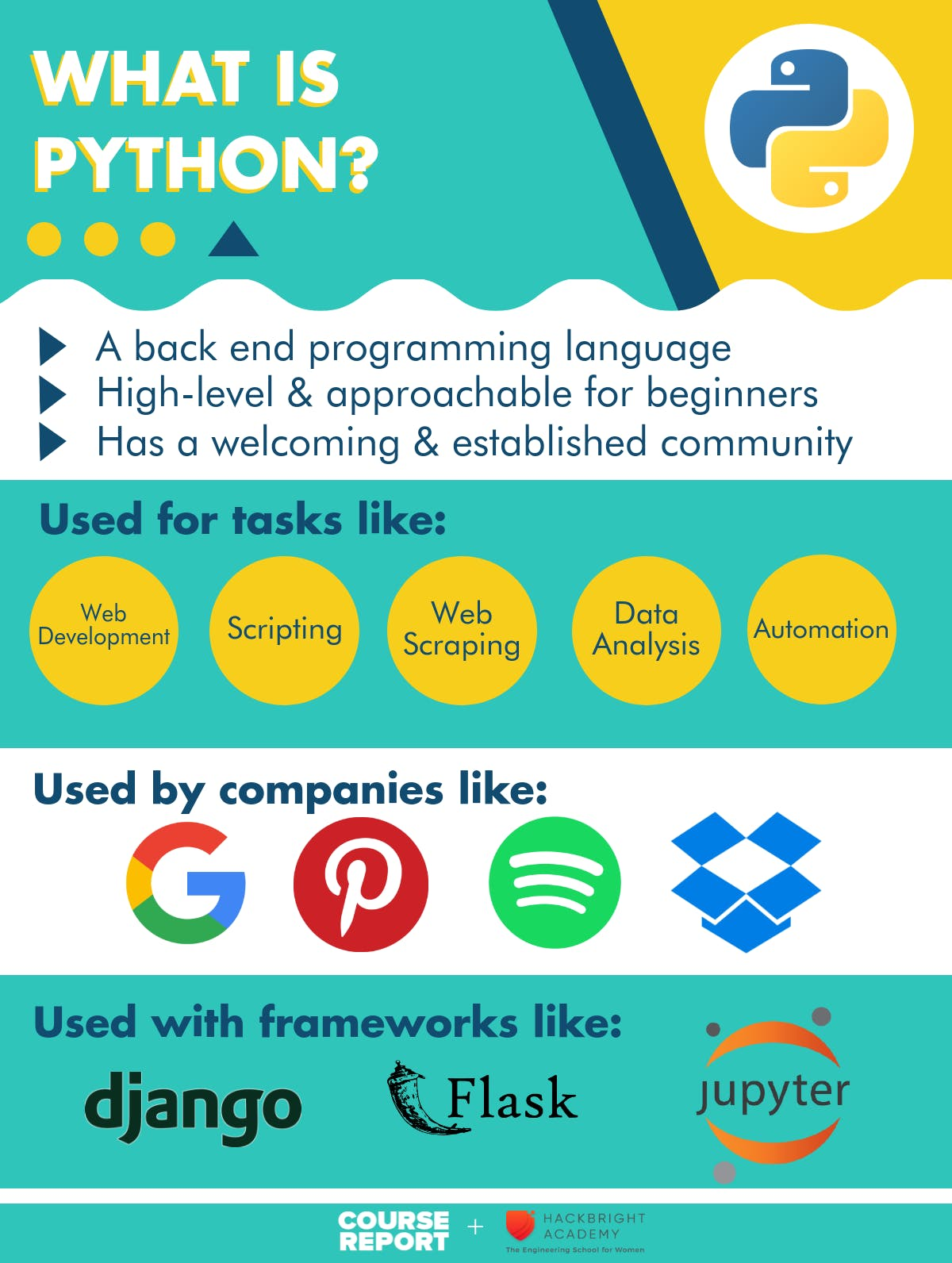 What is python programming infographic