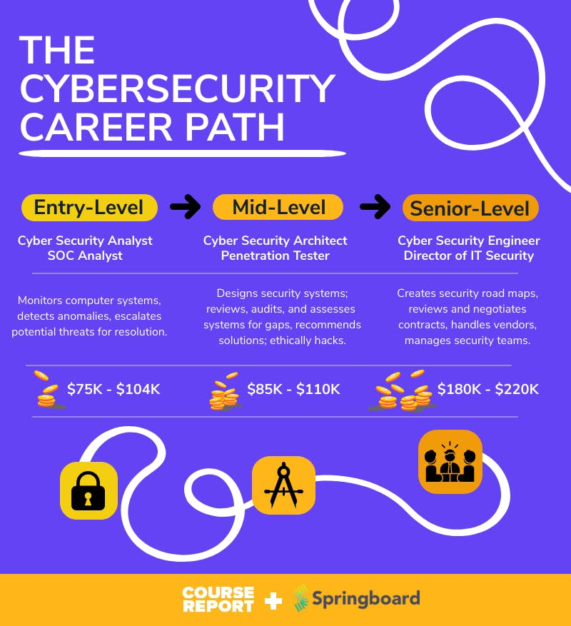 Springboard   cybersecurity career path infographic