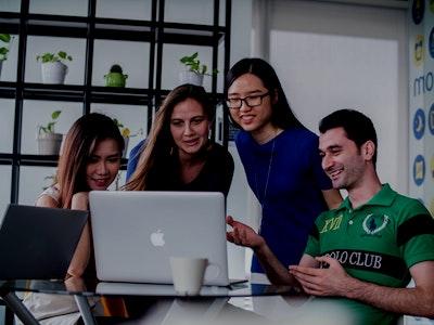 Software guild online